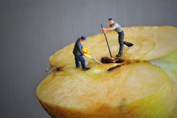 Most Toxic Dog apple core