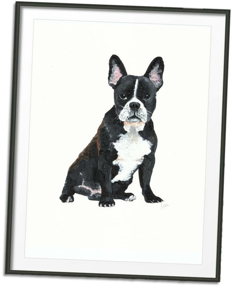 pet portraits grid