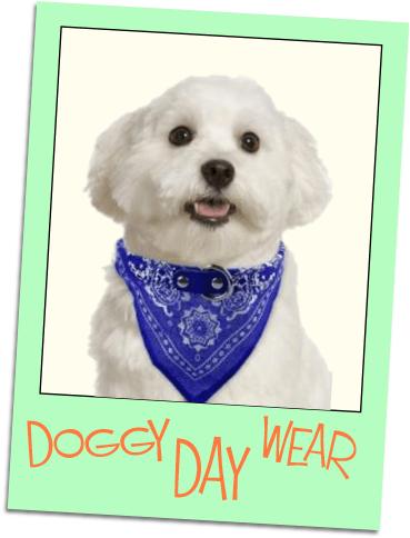doggie day wear grid