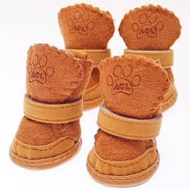 doggie day wear shoes