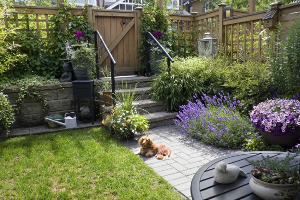 pet-friendly garden