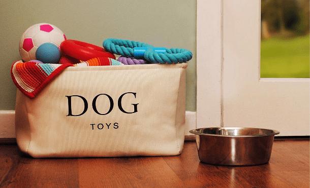 dog baskets lifestyle