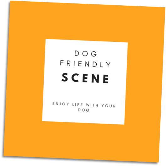 dog-friendly scene grid