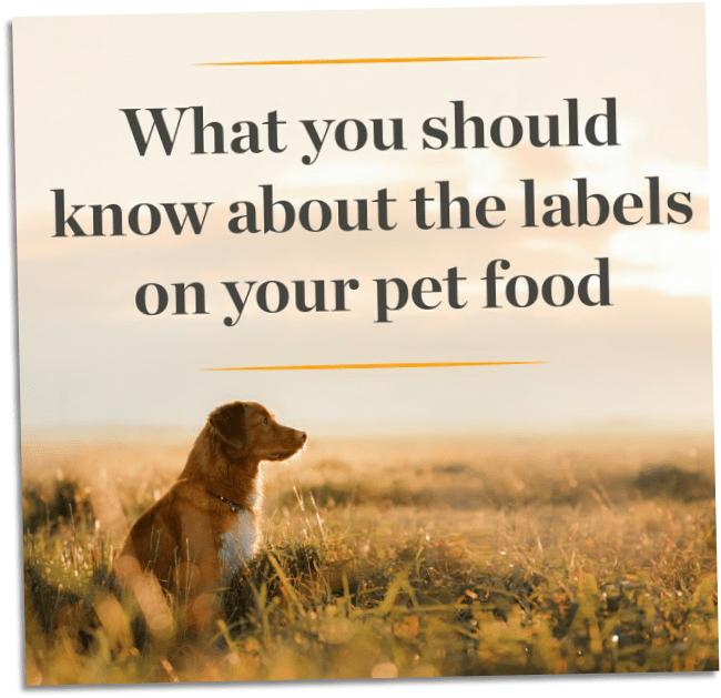 pet food grid