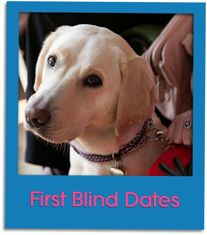 guide dog grid