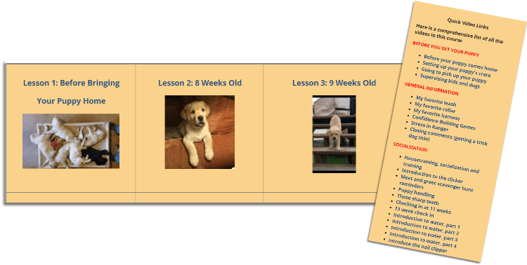raising your puppy course
