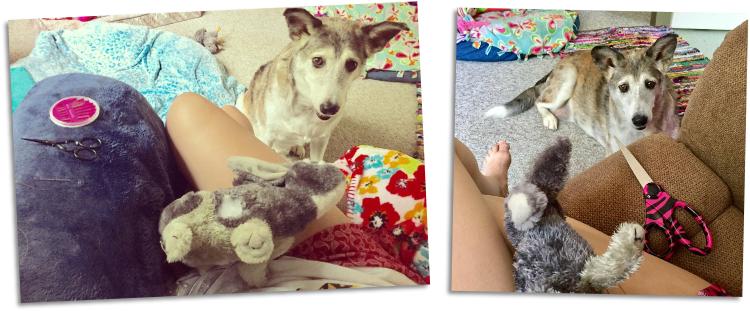 stuffed toys mending