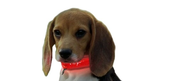 pet gifts collar