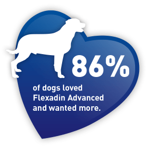 flexadin advance taste