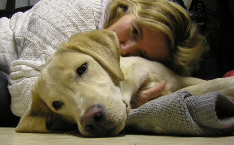 your pooch love