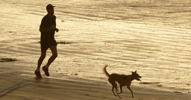 work out jog