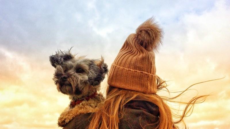 Emotional Support dog outside