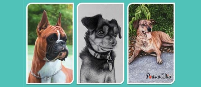 Dog pet memorial cover