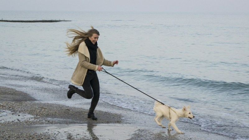 pet parent with dog running