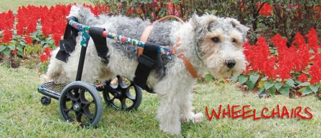 dog wheelchair cover