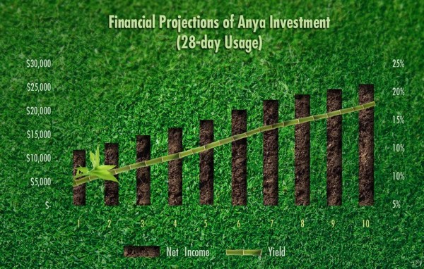 Anya's investment program is developed with long-term and short-term returns in mind. As an investor, we will work with you in understanding the returns you seek, balanced with the usage you desire.