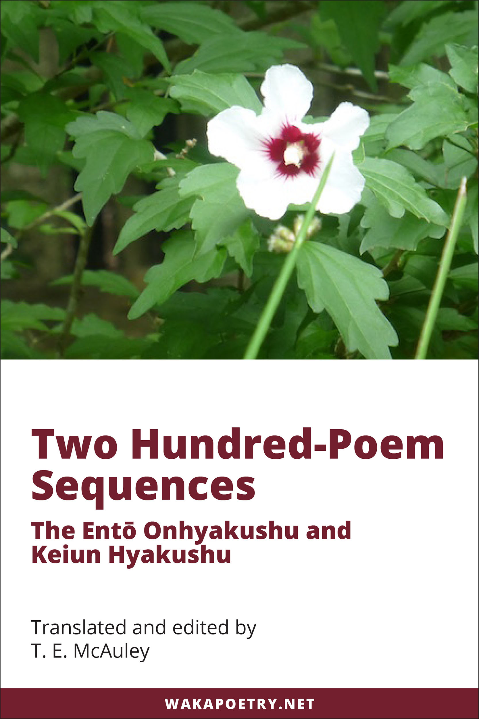 Two Hundred Poem Sequences