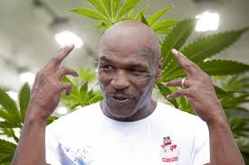 Big Mike To Reality TV His New Weed Life
