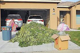 Raids on CA Grow Houses Finding More & More Chinese Nationals, Mysterious Financing