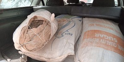 Nigeria: Man arrested in marijuana-loaded vehicle