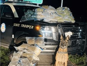 Florida K9 Titan Busts Car That Rolls Through Stop Sign