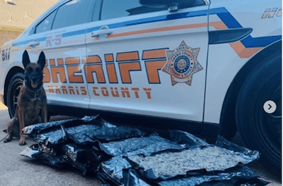 USA: Package containing 32 bags of marijuana delivered to wrong home!
