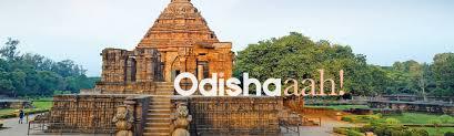 India : Odisha seizes a record 1,054 quintals of marijuana this year