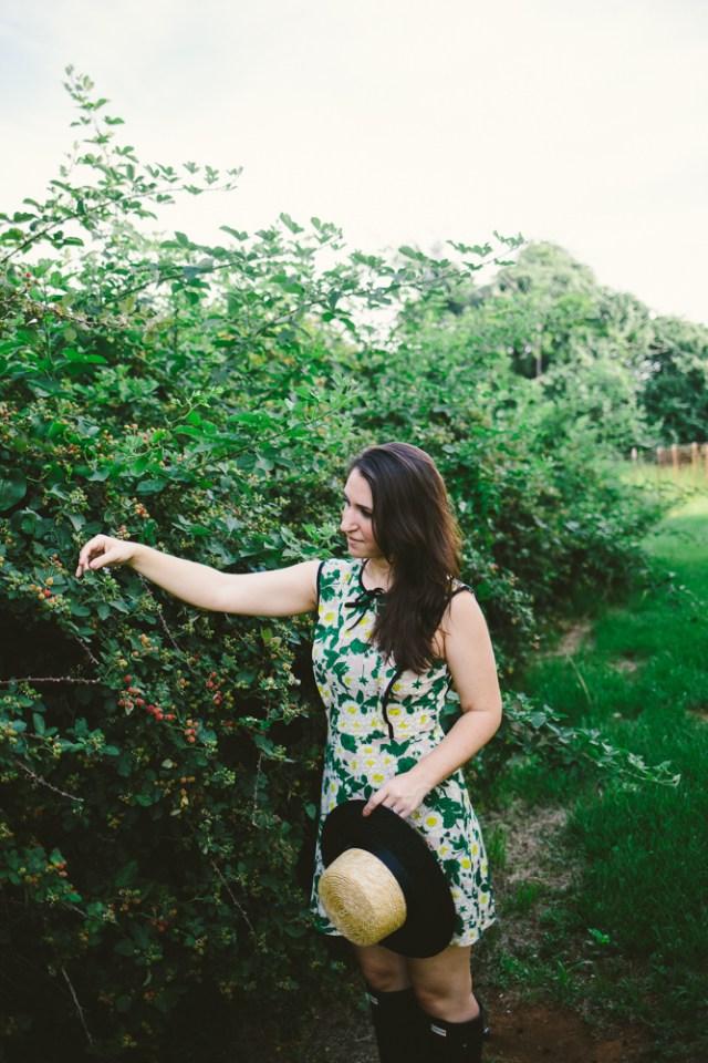 Pear Picking - Waketon Road Blog-8