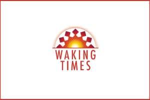 WIKI - Plato