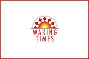 Flickr - Cell Tower - acidpix