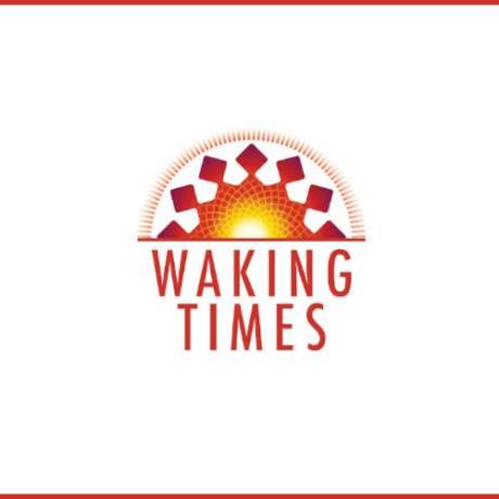 essence_of_propaganda-300x300