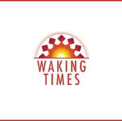 Jing Qi Shen 2