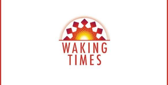Jing Qi Shen