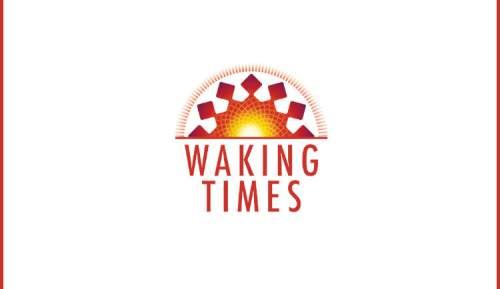 soul-model-simple