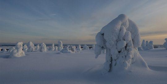 Finnisches Winterwonderland