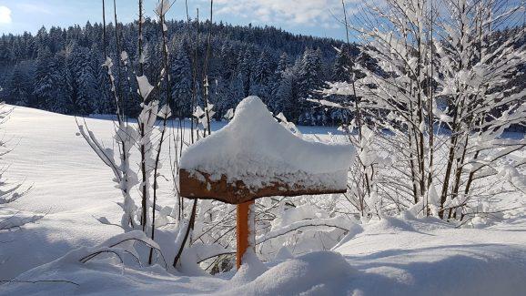 Ferienwohnung Wald Kobel