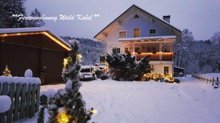 Wald Kobel Weihnacht