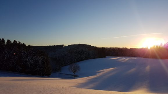 Straße im Winter zum Wald Kobel
