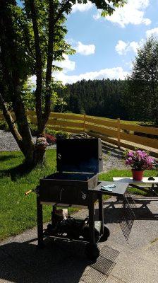 Grill und Garten Ferienhaus Sacherl Wald Kobel