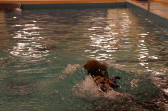 Uimaan!