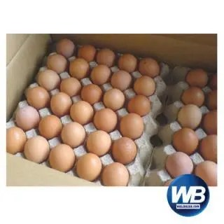 Chicken Eggs (Layer) 30 pcs