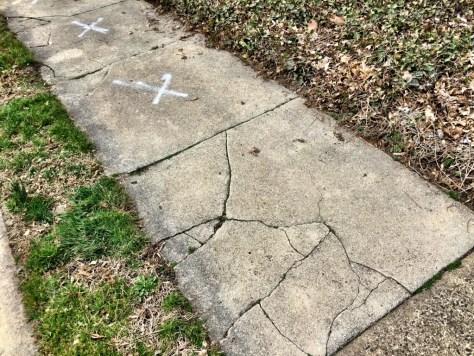 Jenkintown's sidewalk follies: Sidewalk Cracks on Rodman