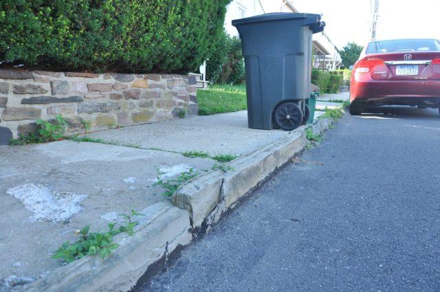 Sidewalk and curb along Cedar Street.