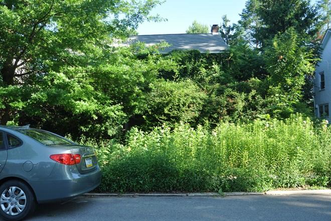 Property maintenance violation on 400 block of Runnymede.
