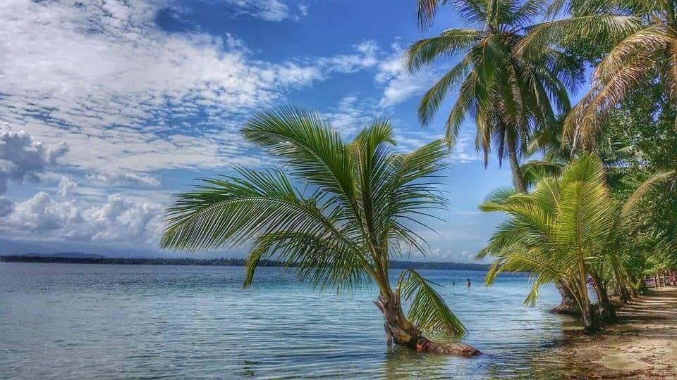 Island getaway in Bocas del Toro