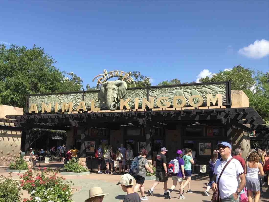 Animal Kingdom Entrance sign