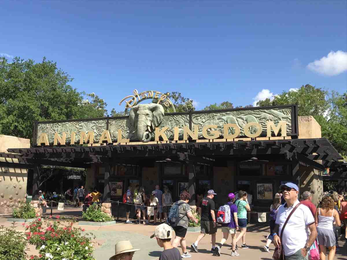 Animal Kingdom Entrance sign