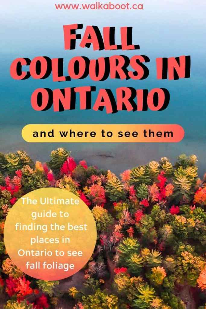 best places to see fall colours in ontario