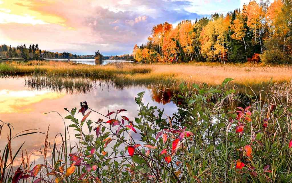 fall season in Canada in the kawarthas