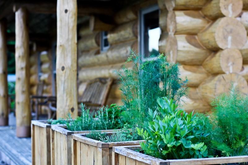 herb garden boxes